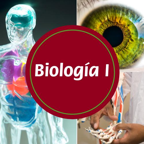 Biología - 4to año