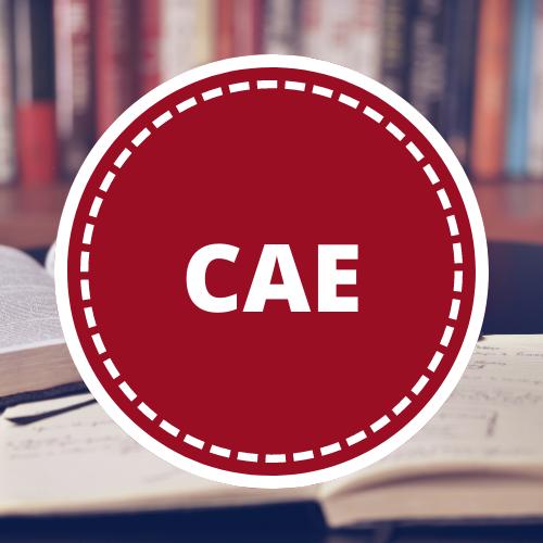 Inglés CAE - 6to