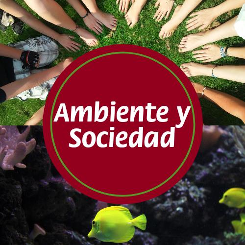 Ambiente y Sociedad - 6to año