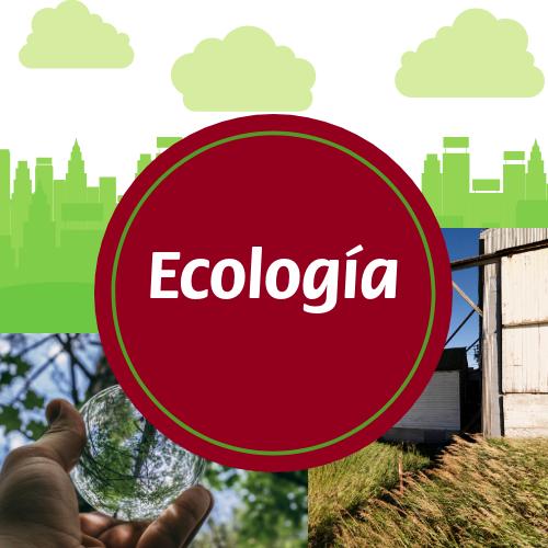 Ecología - 6to año